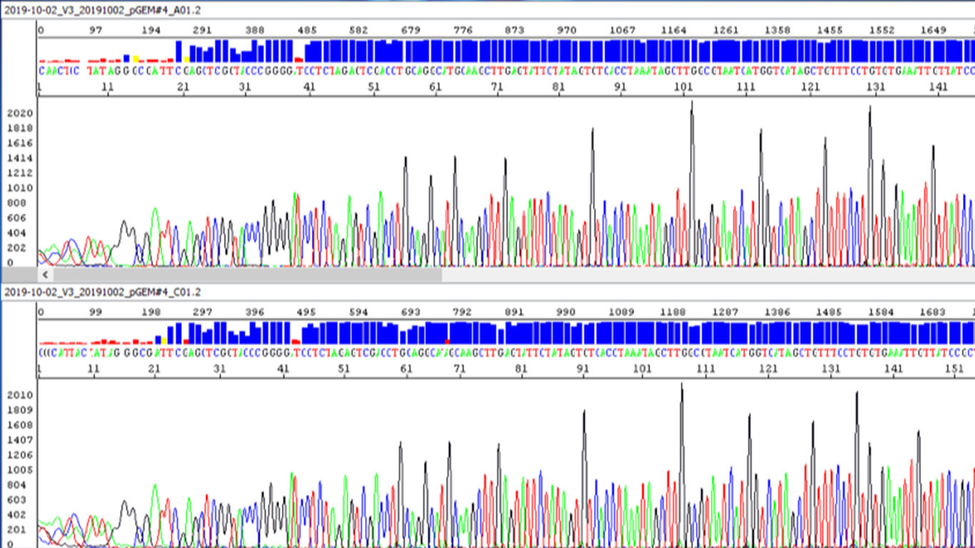 High-quality Sanger sequencing SupreDye chemistry